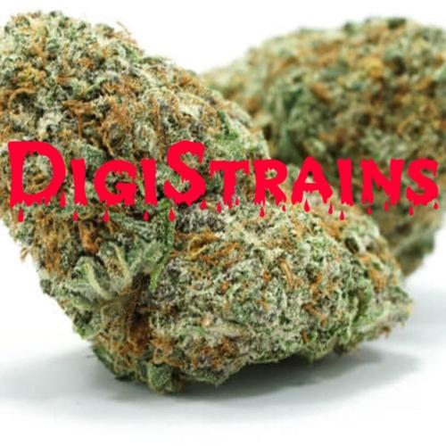 DigiStrains