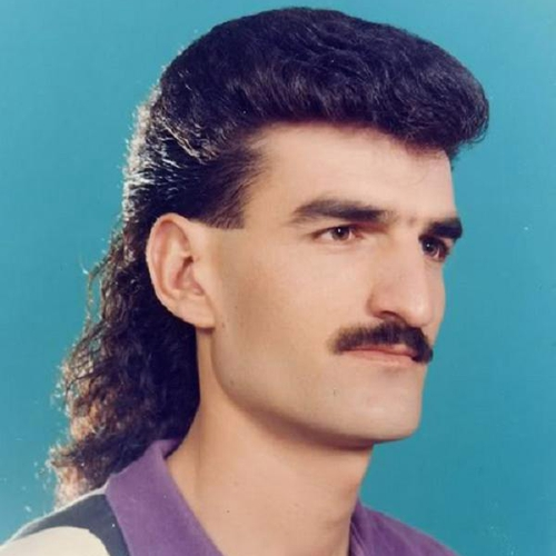 TheMullet
